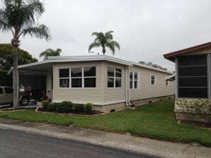 Home Window Tinting in Tampa, FL (1)